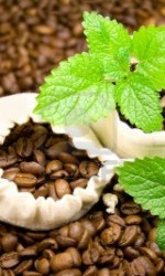 _vyrn_4829446846-two-draw-string-bags-filled-with-coffee-beans-topped-off-with-2-mint-leaves